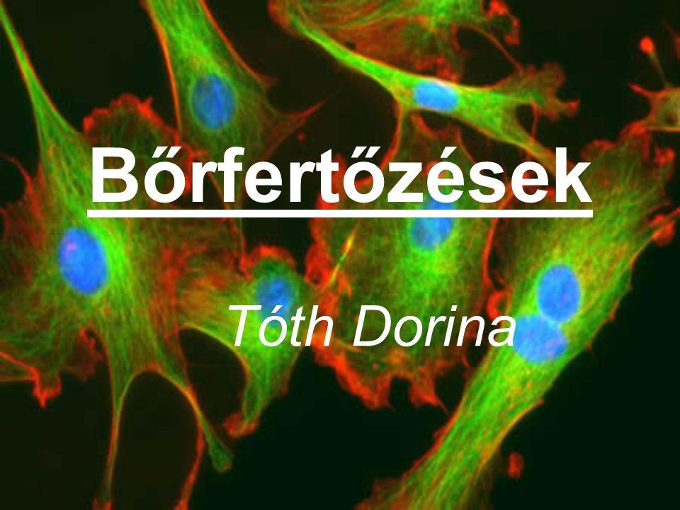 Bőrfertőzések Tóth Dorina