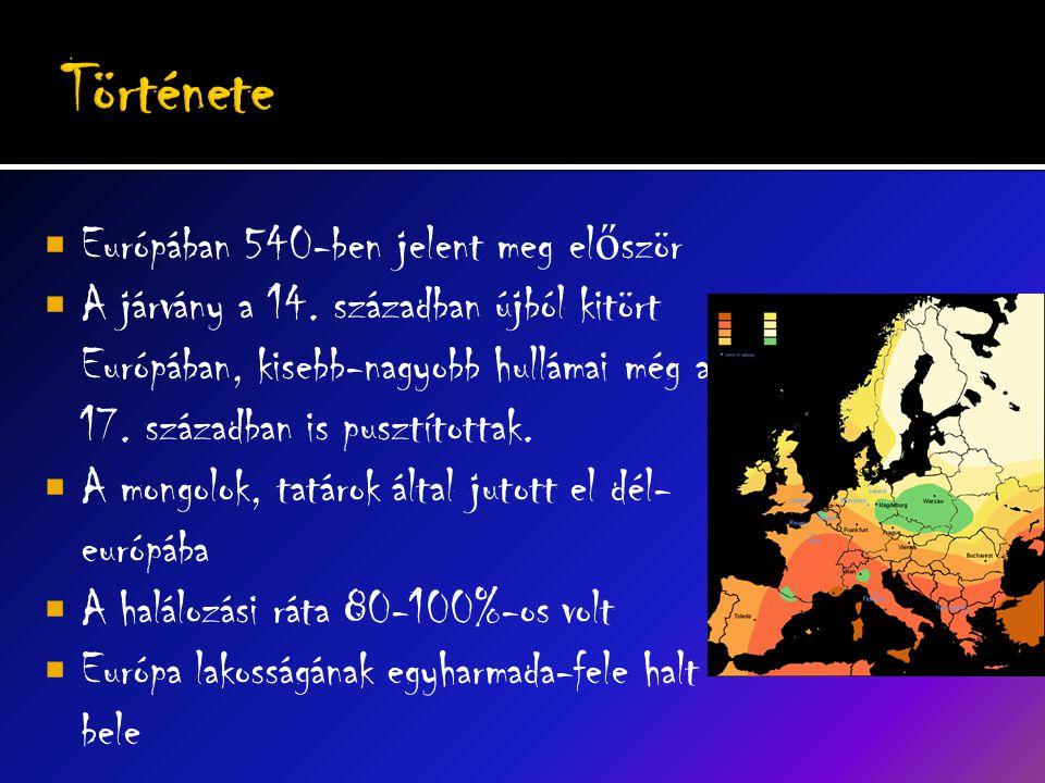 Története Európában 540-ben jelent meg először