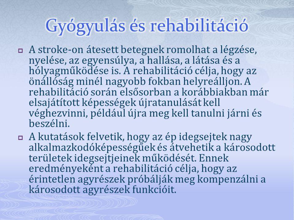 Gyógyulás és rehabilitáció