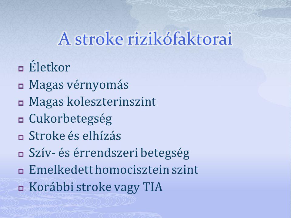 A stroke rizikófaktorai