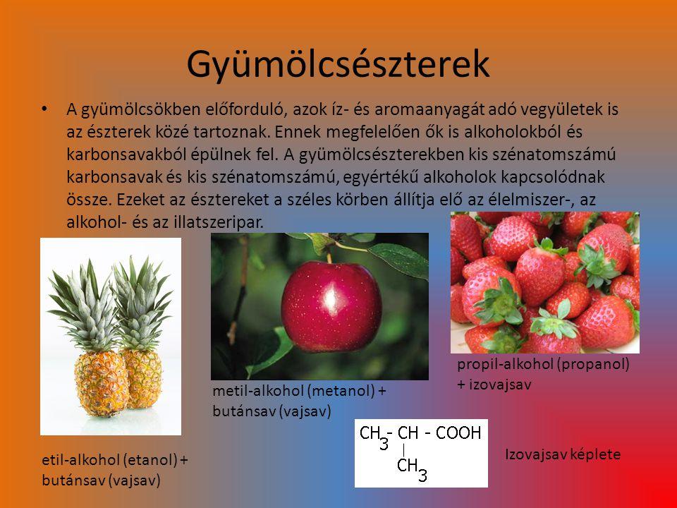 Gyümölcsészterek
