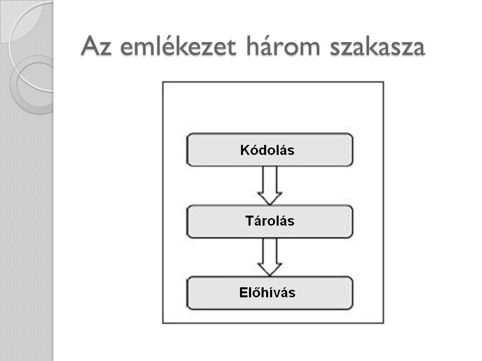 Az emlékezet három szakasza