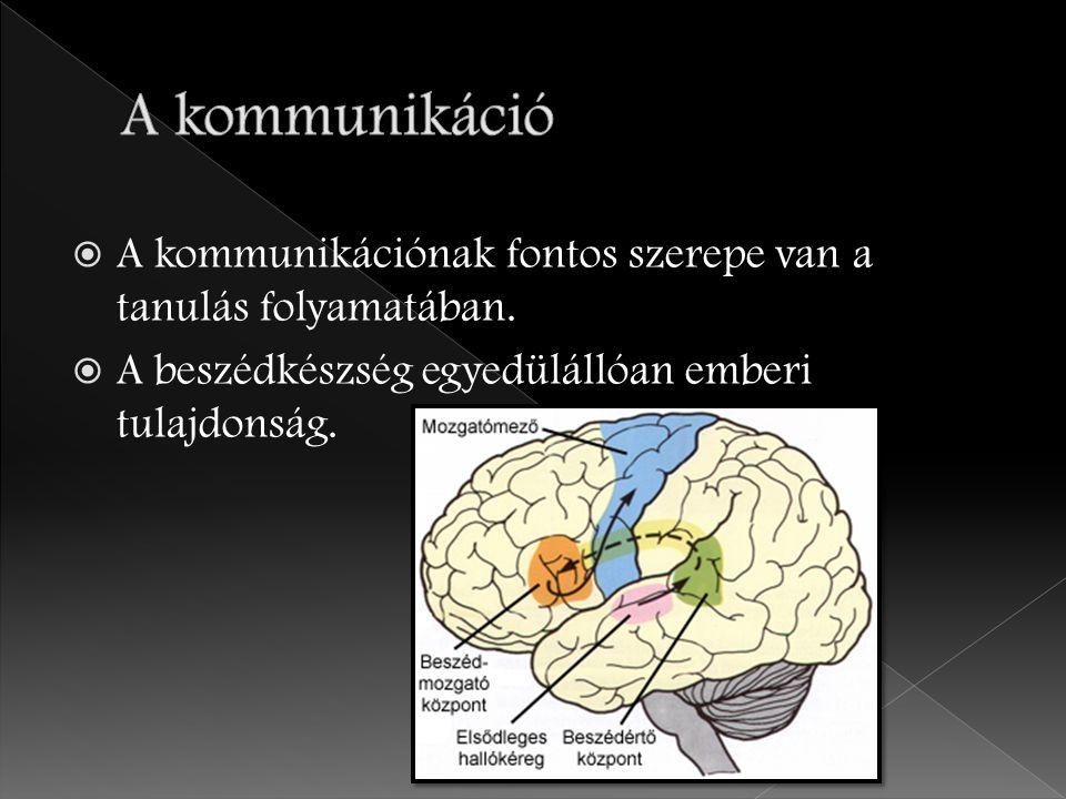 A kommunikáció A kommunikációnak fontos szerepe van a tanulás folyamatában.