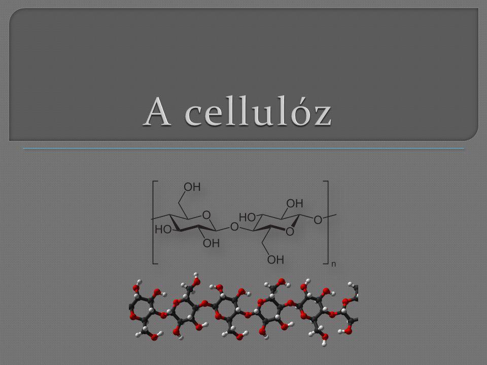 A cellulóz