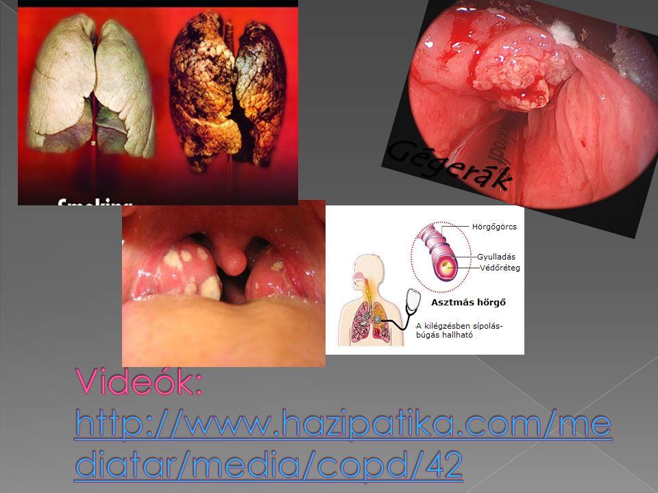 Videók: http://www.hazipatika.com/mediatar/media/copd/42