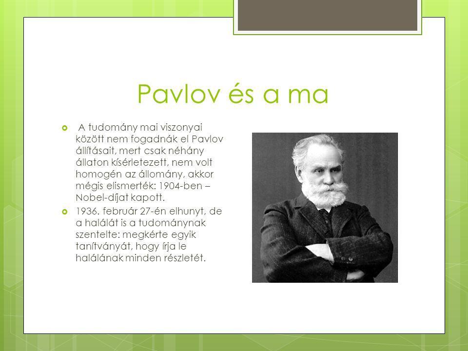 Pavlov és a ma