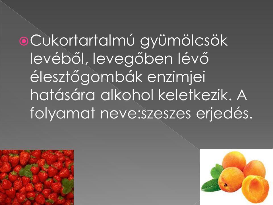 Cukortartalmú gyümölcsök levéből, levegőben lévő élesztőgombák enzimjei hatására alkohol keletkezik.