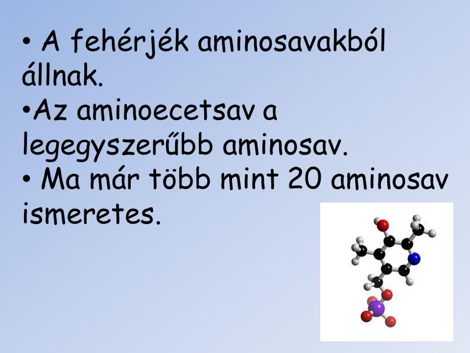 A fehérjék aminosavakból állnak.