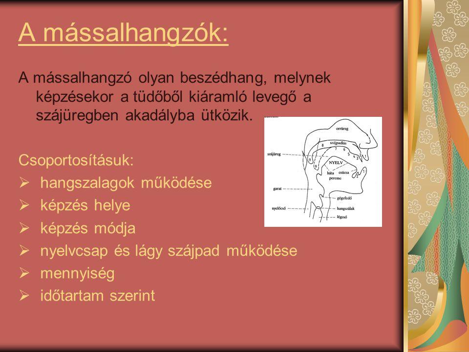 A mássalhangzók: A mássalhangzó olyan beszédhang, melynek képzésekor a tüdőből kiáramló levegő a szájüregben akadályba ütközik.