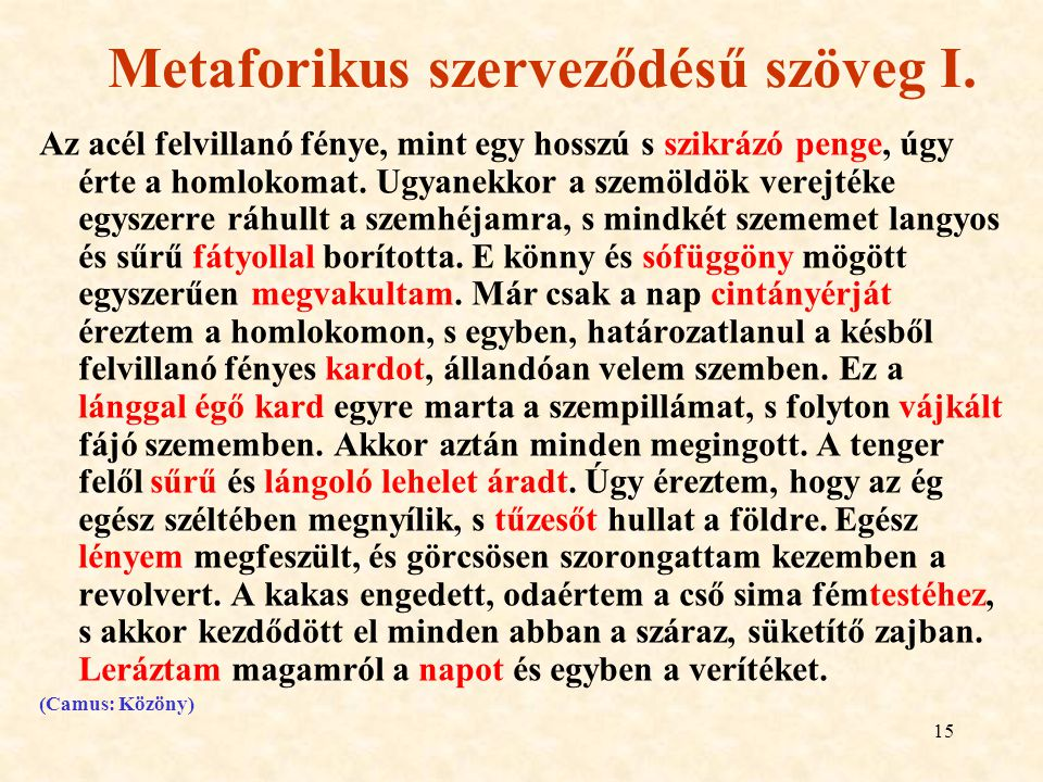 Metaforikus szerveződésű szöveg I.