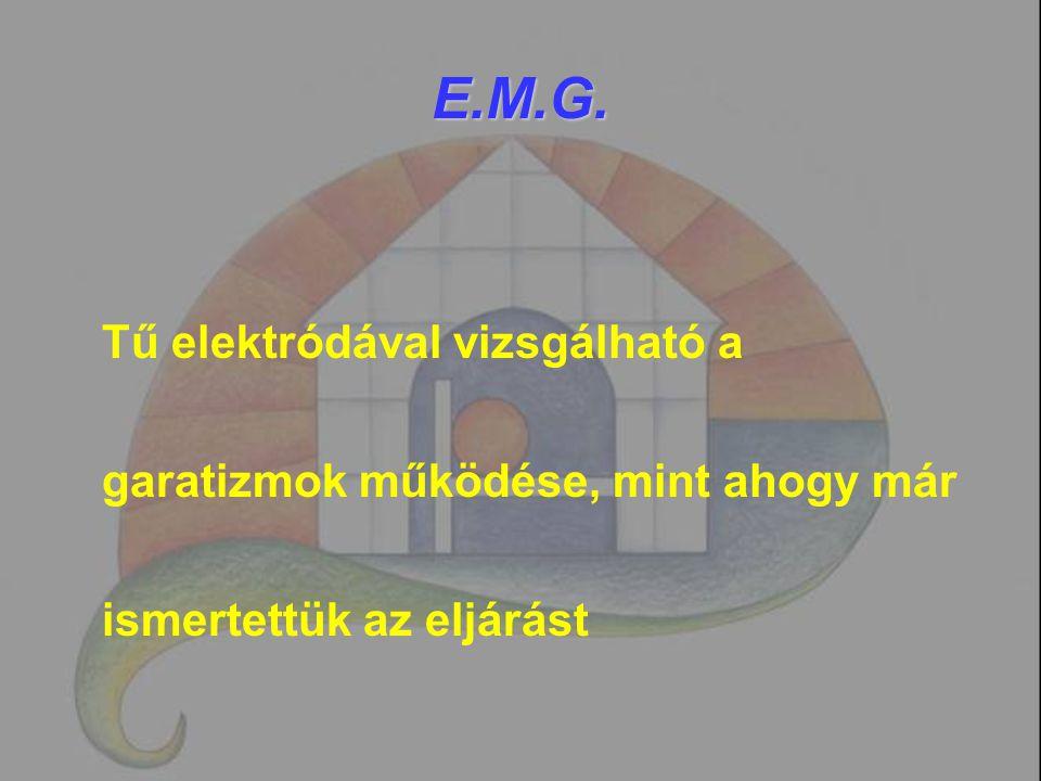 E.M.G. Tű elektródával vizsgálható a garatizmok működése, mint ahogy már ismertettük az eljárást