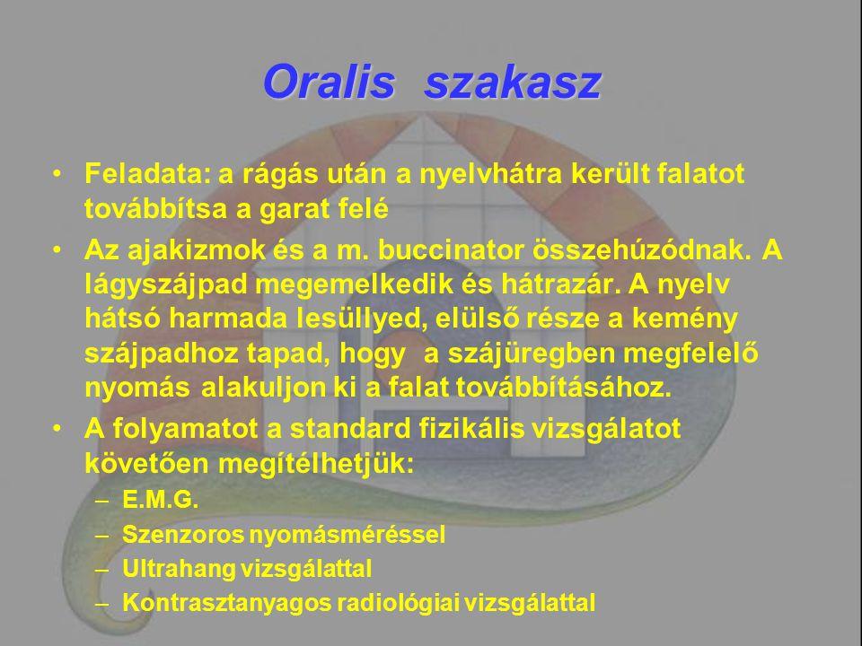 Oralis szakasz Feladata: a rágás után a nyelvhátra került falatot továbbítsa a garat felé.
