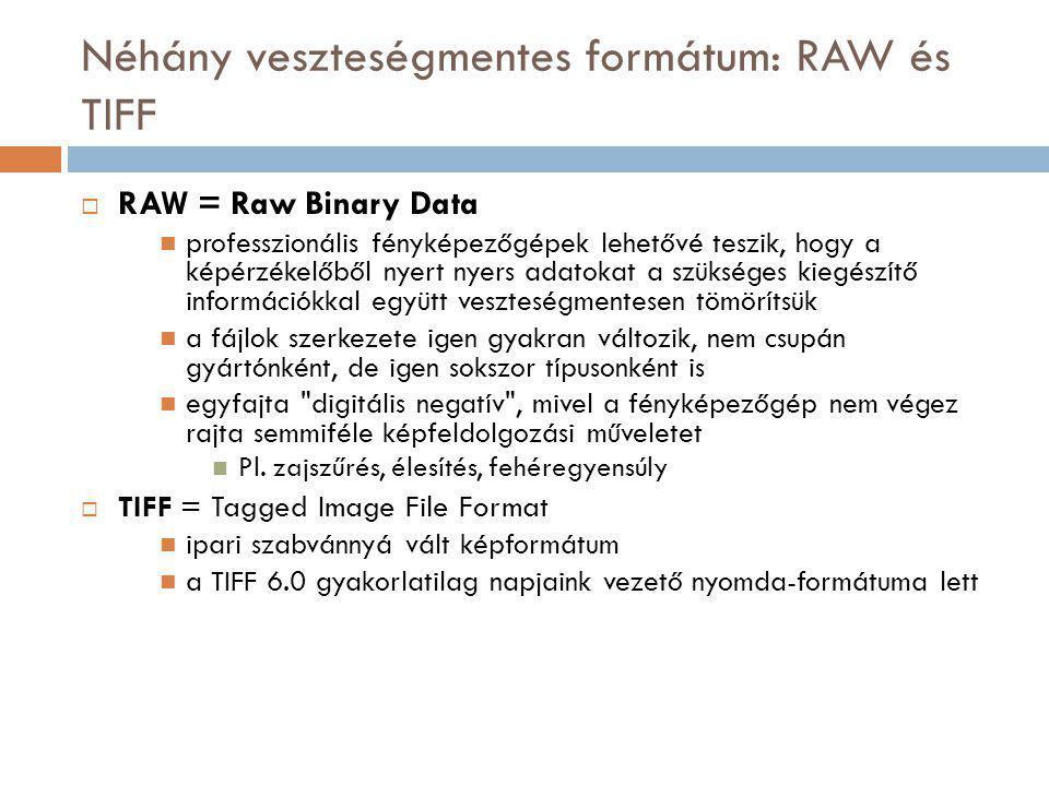 Néhány veszteségmentes formátum: RAW és TIFF