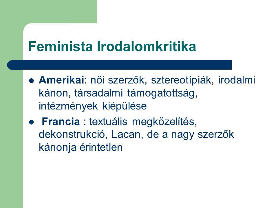 Feminista Irodalomkritika