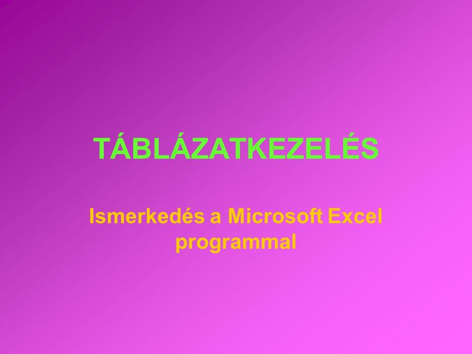 Ismerkedés a Microsoft Excel programmal
