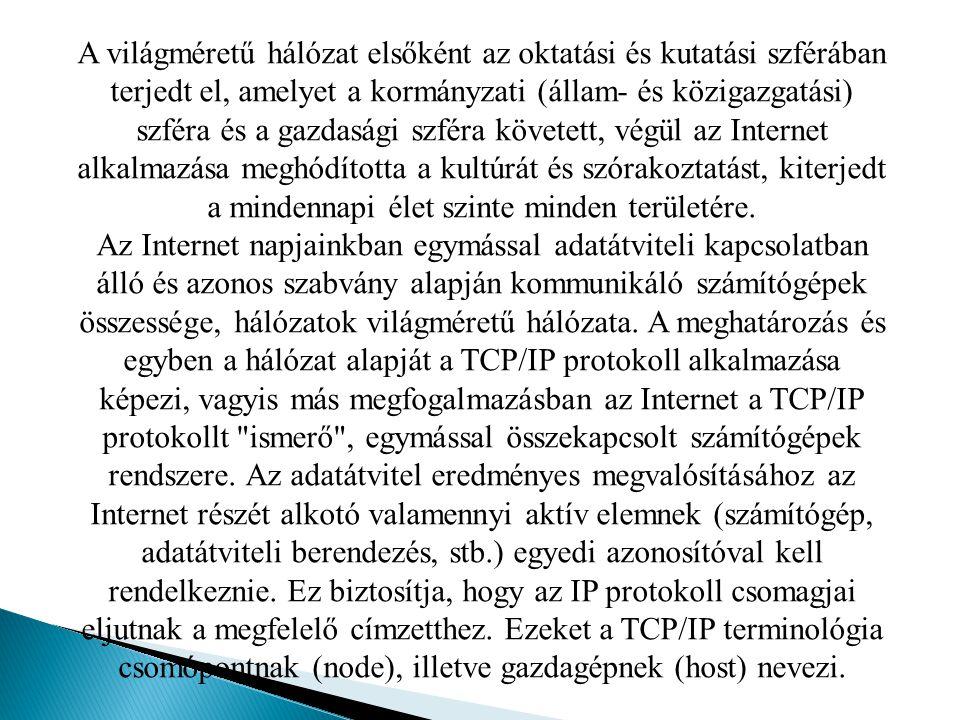 A világméretű hálózat elsőként az oktatási és kutatási szférában terjedt el, amelyet a kormányzati (állam- és közigazgatási) szféra és a gazdasági szféra követett, végül az Internet alkalmazása meghódította a kultúrát és szórakoztatást, kiterjedt a mindennapi élet szinte minden területére.