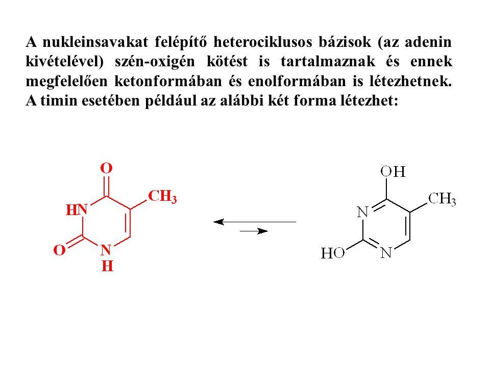 A nukleinsavakat felépítő heterociklusos bázisok (az adenin kivételével) szén-oxigén kötést is tartalmaznak és ennek megfelelően ketonformában és enolformában is létezhetnek.