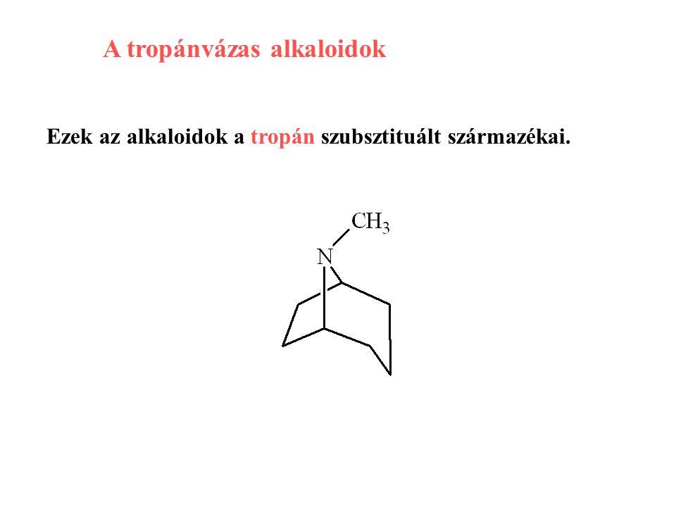 A tropánvázas alkaloidok
