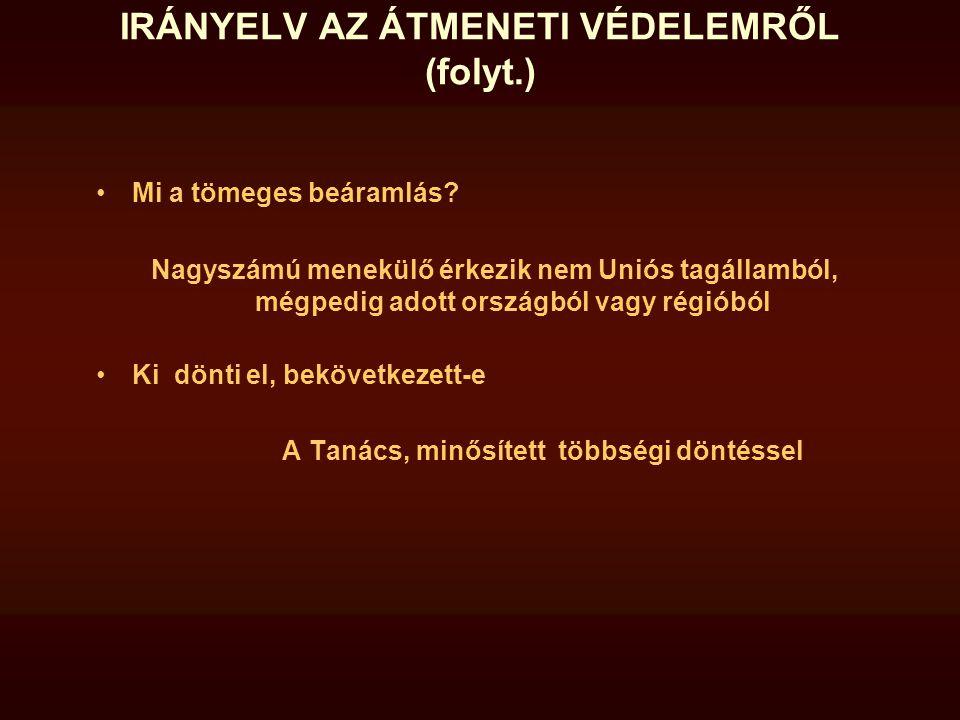 IRÁNYELV AZ ÁTMENETI VÉDELEMRŐL (folyt.)