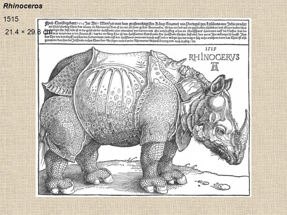 Rhinoceros 1515 21.4 × 29.8 cm