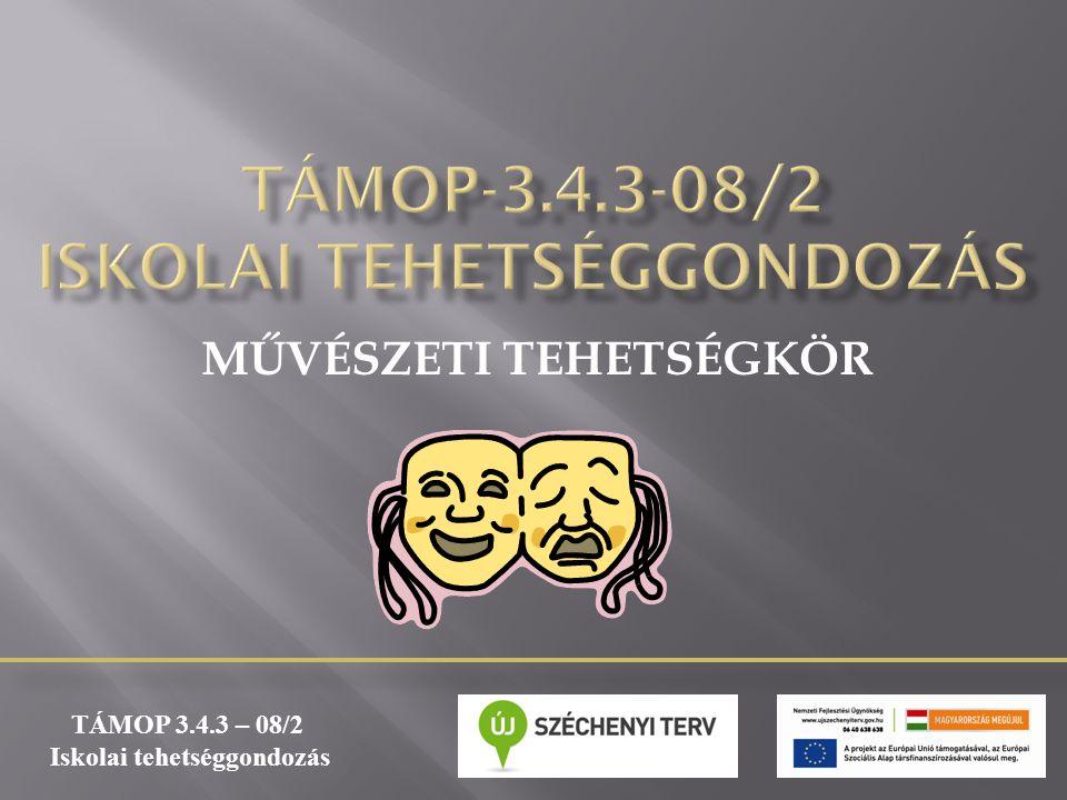 TÁMOP-3.4.3-08/2 ISKOLAI TEHETSÉGGONDOZÁS