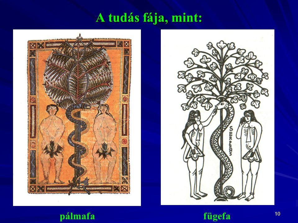 A tudás fája, mint: pálmafa fügefa