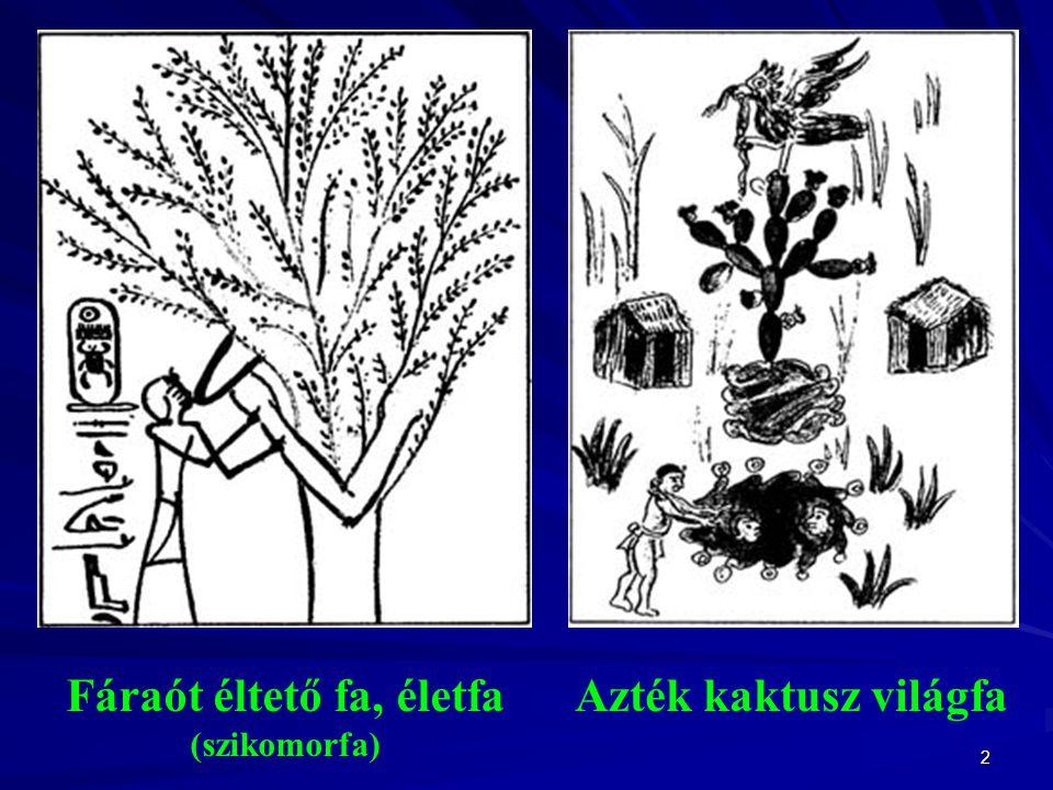 Fáraót éltető fa, életfa (szikomorfa)