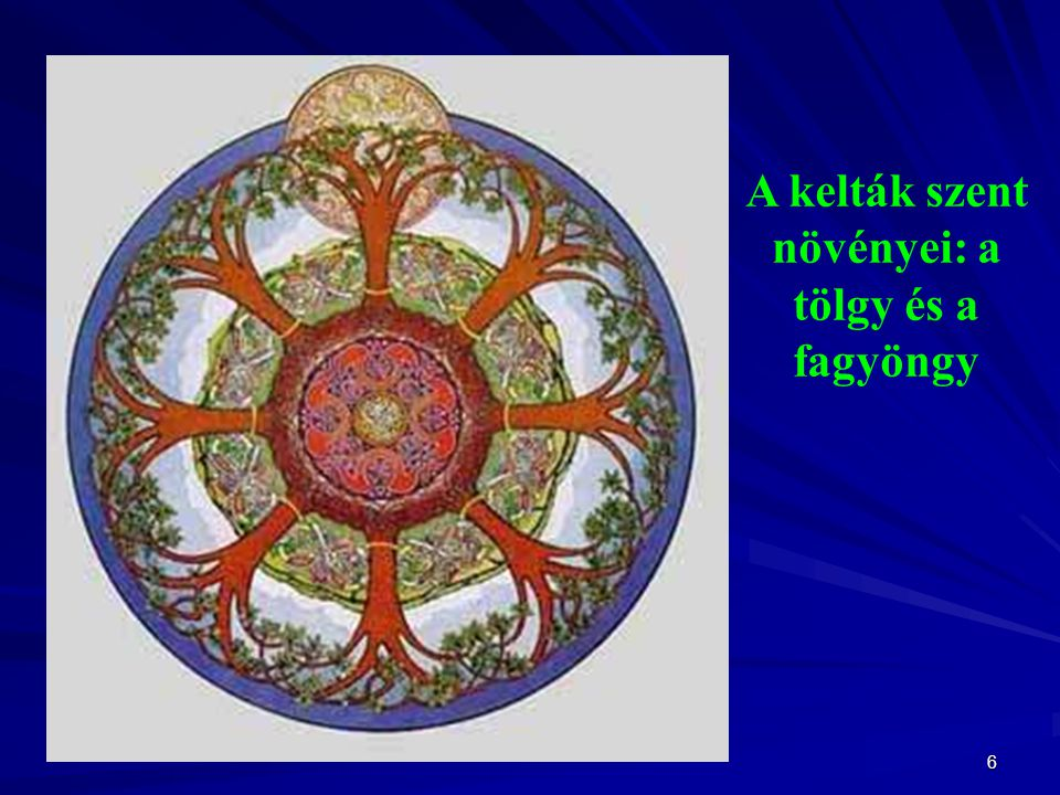 A kelták szent növényei: a tölgy és a fagyöngy