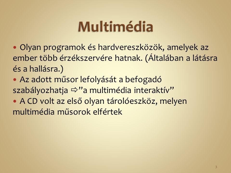 Multimédia Olyan programok és hardvereszközök, amelyek az ember több érzékszervére hatnak. (Általában a látásra és a hallásra.)