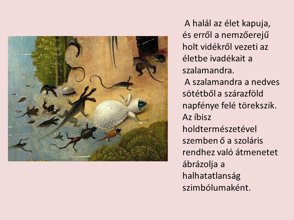 A halál az élet kapuja, és erről a nemzőerejű holt vidékről vezeti az életbe ivadékait a szalamandra.