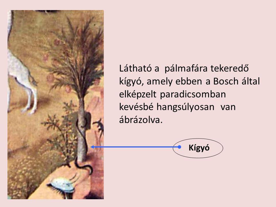 Látható a pálmafára tekeredő kígyó, amely ebben a Bosch által elképzelt paradicsomban kevésbé hangsúlyosan van ábrázolva.