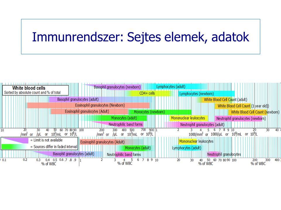 Immunrendszer: Sejtes elemek, adatok