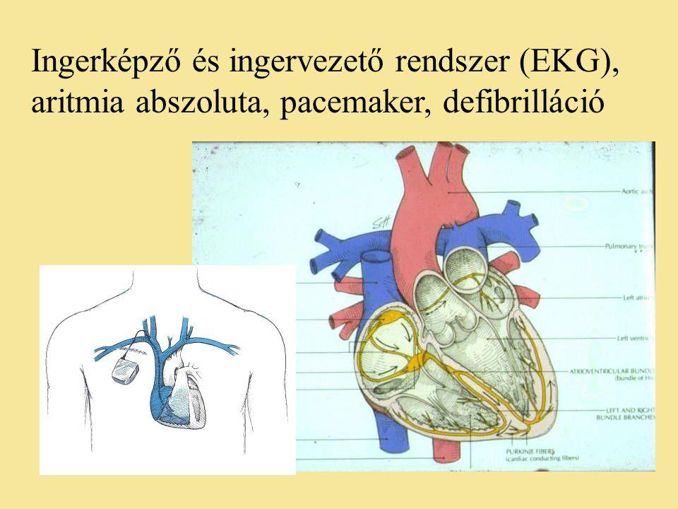 Ingerképző és ingervezető rendszer (EKG),