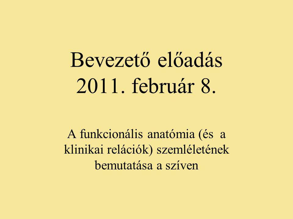 Bevezető előadás 2011. február 8.