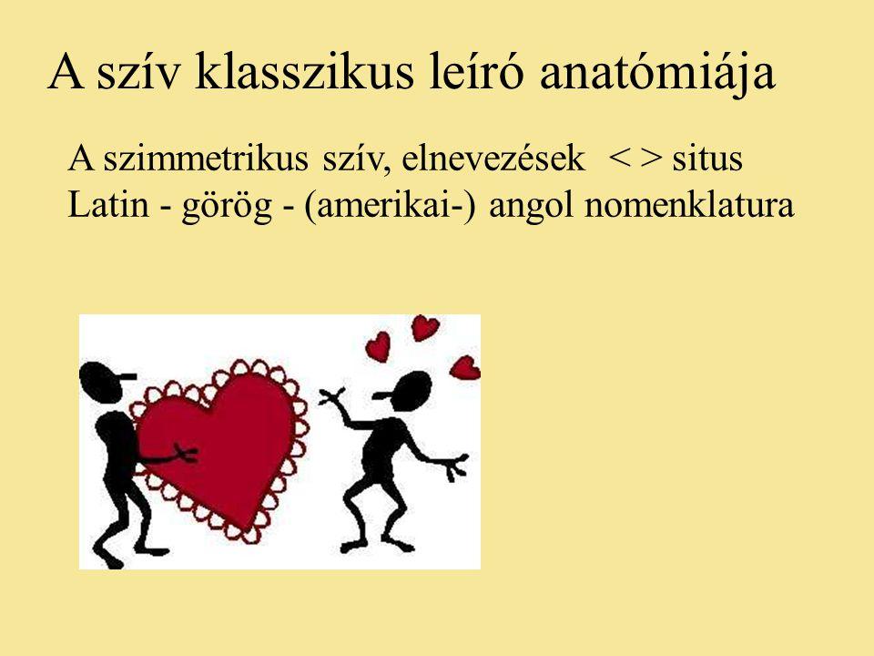 A szív klasszikus leíró anatómiája