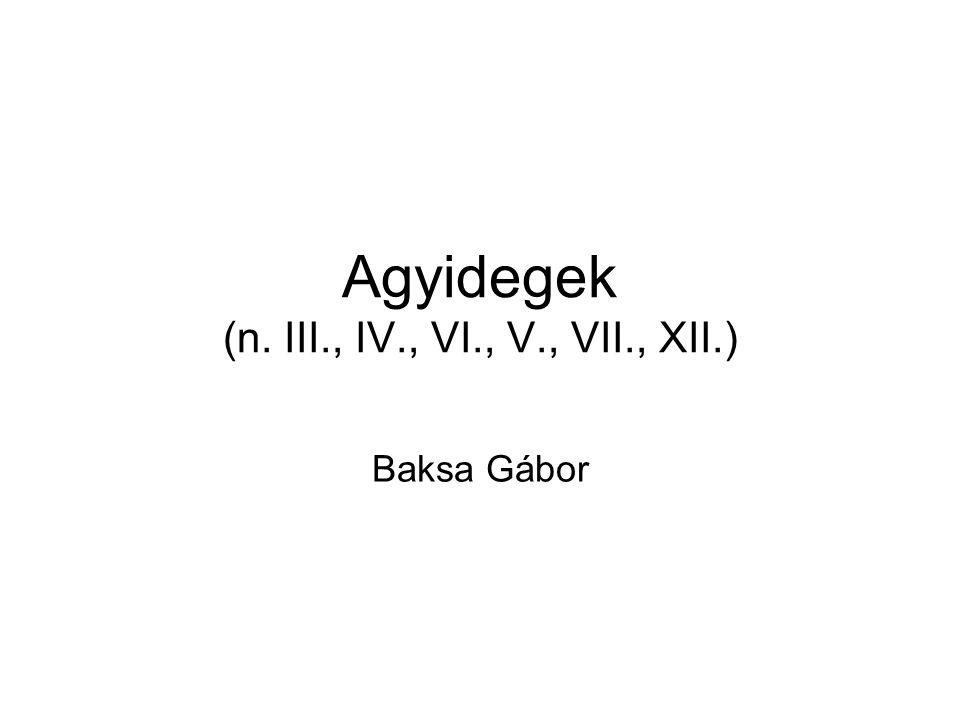 Agyidegek (n. III., IV., VI., V., VII., XII.)