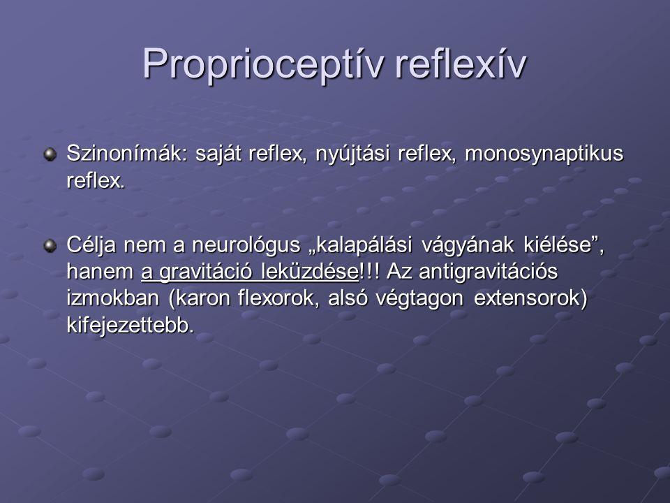 Proprioceptív reflexív
