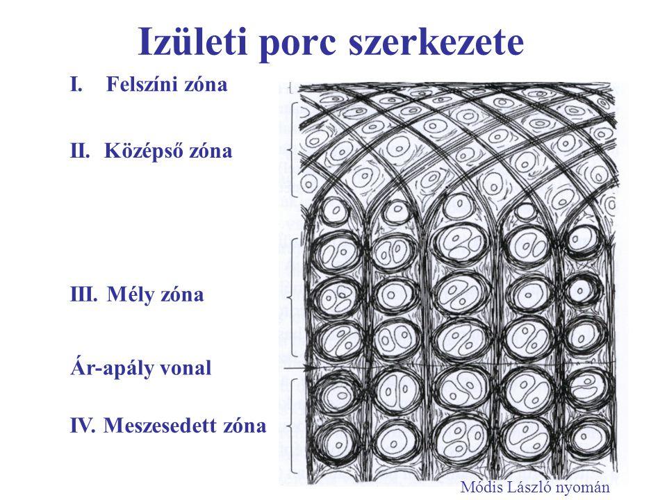 Izületi porc szerkezete