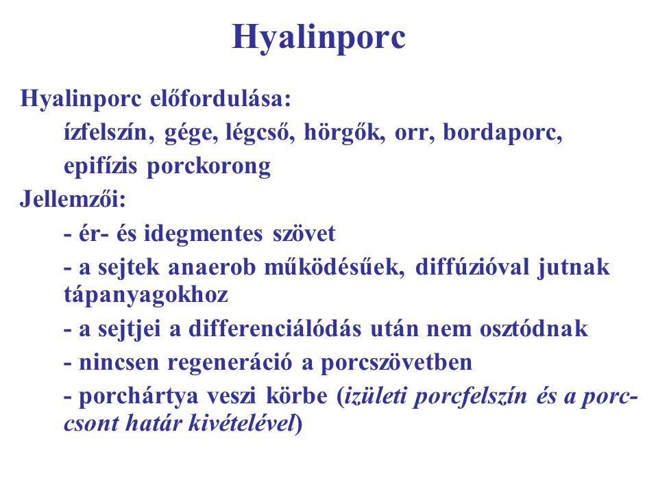 Hyalinporc Hyalinporc előfordulása: