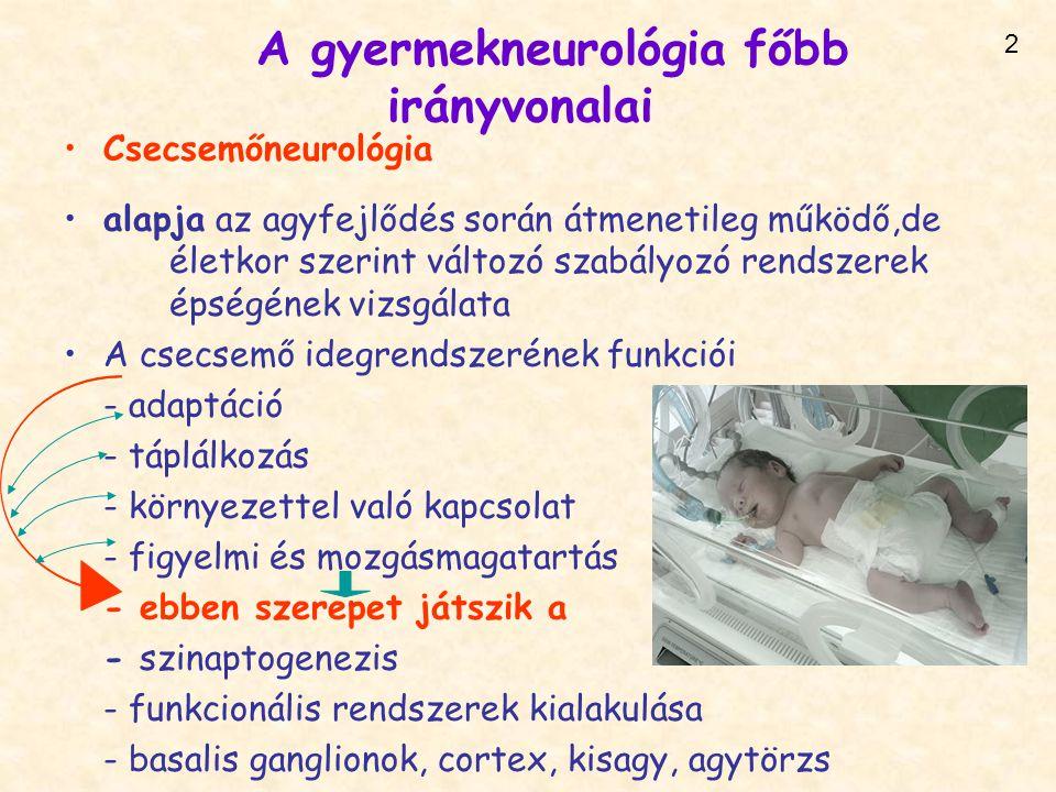 A gyermekneurológia főbb irányvonalai