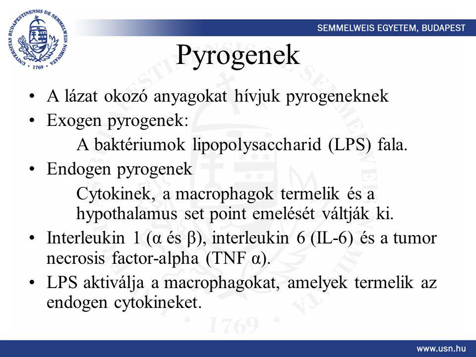 Pyrogenek A lázat okozó anyagokat hívjuk pyrogeneknek