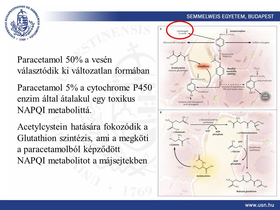 Paracetamol 50% a vesén választódik ki változatlan formában