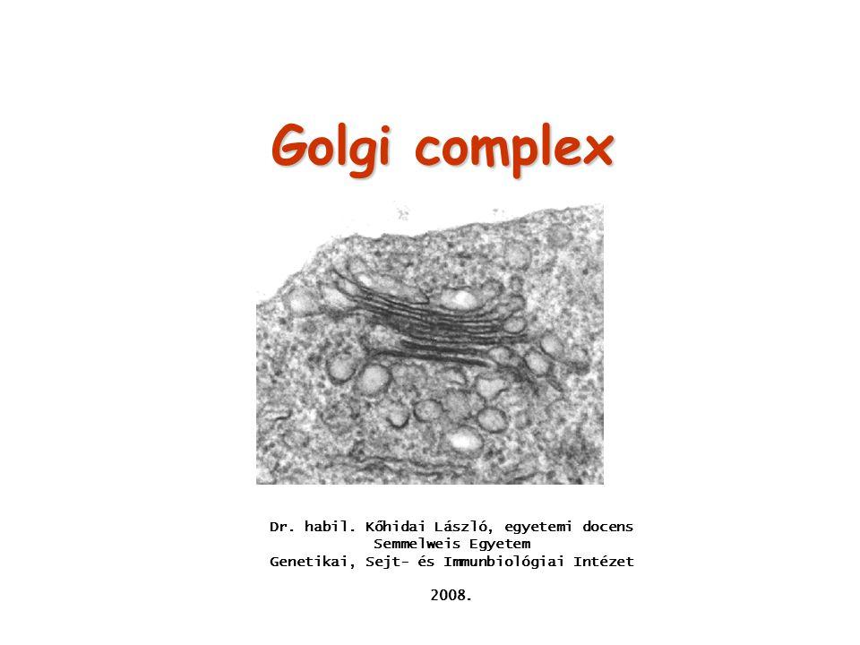 Golgi complex Dr. habil. Kőhidai László, egyetemi docens Semmelweis Egyetem. Genetikai, Sejt- és Immunbiológiai Intézet.