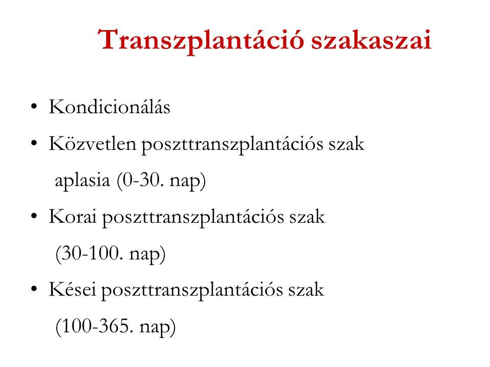 Transzplantáció szakaszai