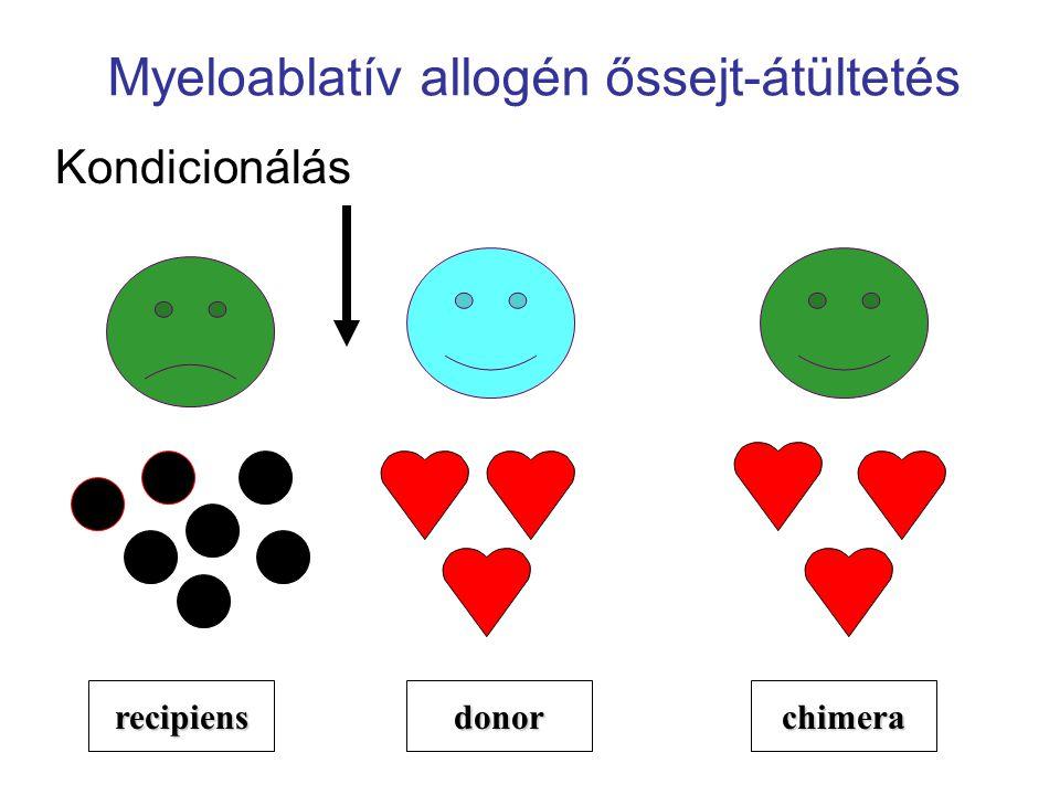Myeloablatív allogén őssejt-átültetés