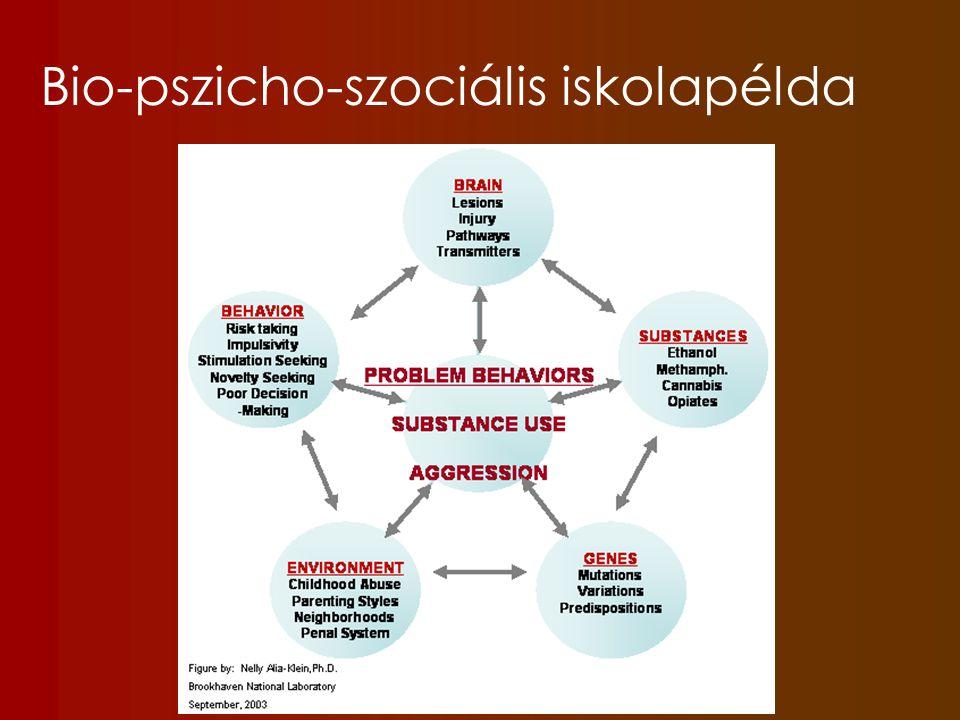 Bio-pszicho-szociális iskolapélda