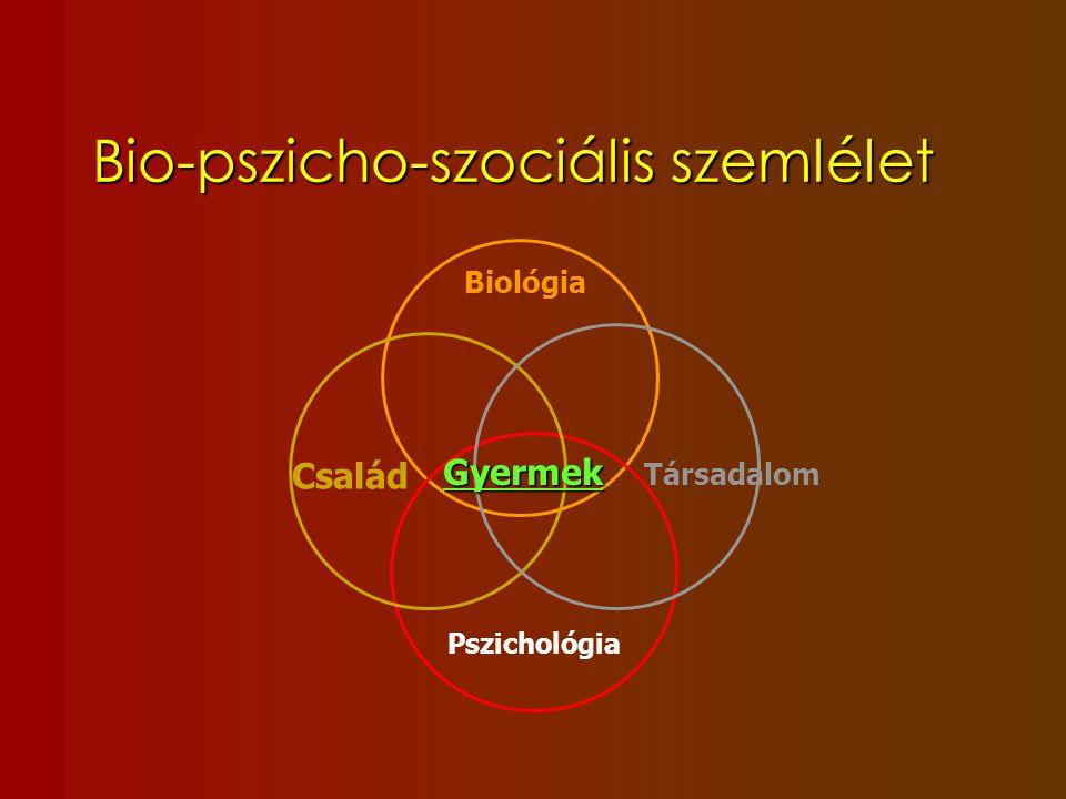 Bio-pszicho-szociális szemlélet