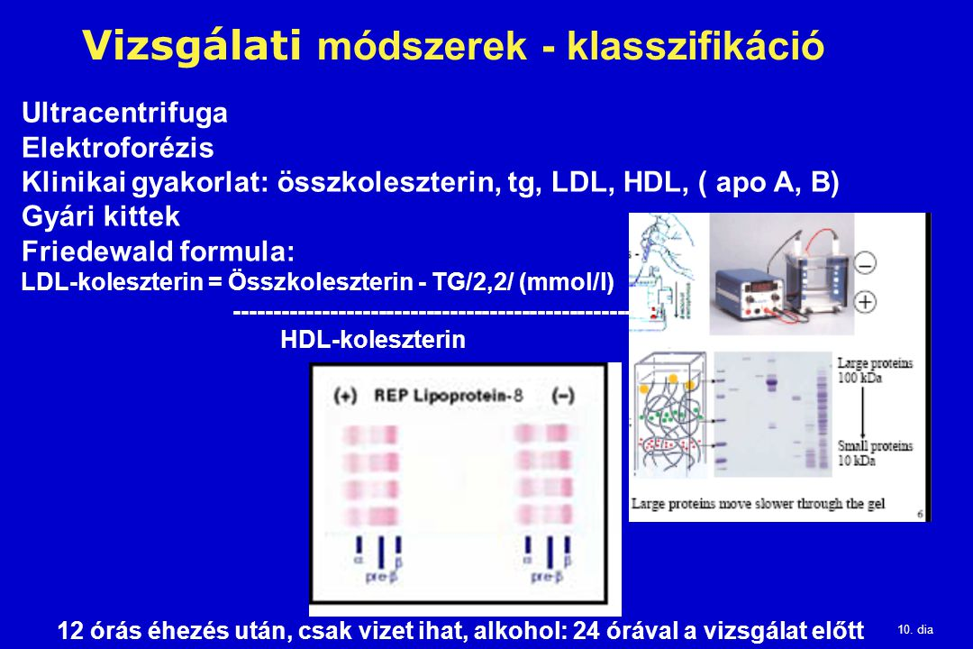Vizsgálati módszerek - klasszifikáció