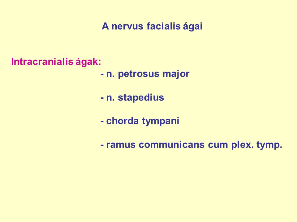 A nervus facialis ágai Intracranialis ágak: - n. petrosus major. - n. stapedius. - chorda tympani.