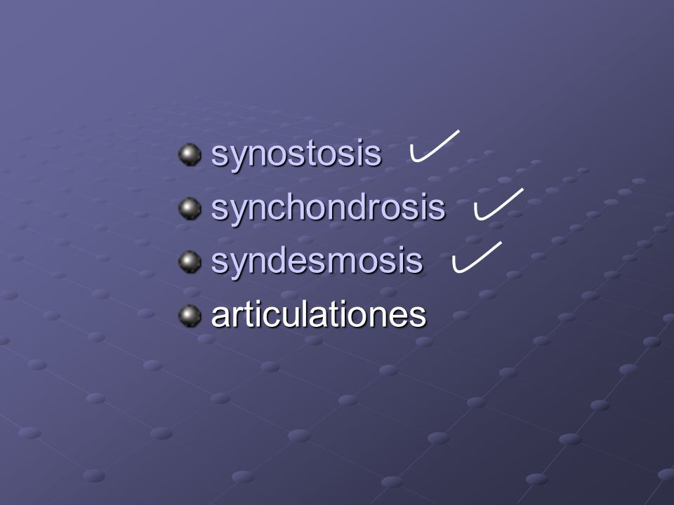synostosis synchondrosis syndesmosis articulationes